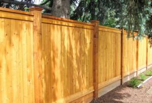 Cedar Privacy Fence Right Denver