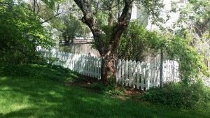 White picket, traditional picket fence, wooden fence