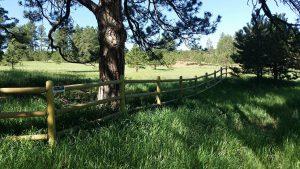 Split rail, three rail treated wood fence for rural setting