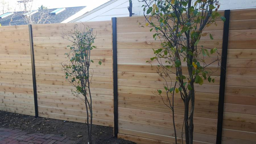 Contemporary cedar privacy fence with metal posts